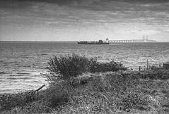 The Bridge / Øresundsbron (gbrammer) Tags: 35mm contaxiia sonnar5015 zeissikon copenhagen delta400 film hc110 rangefinder