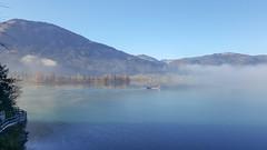 Nebelstimmung (schasa68) Tags: nebel nebelstimmung fog salzkammergut wolfgangsee see lake nature naturphotographie gewässer wasser naturschönheit