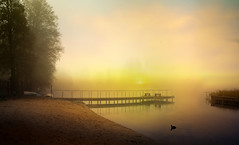 The colors of the day. (augustynbatko) Tags: lake water fog mist sky trees pier bridge bird landscape boats dawn