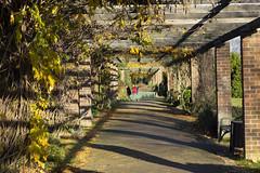 Clayhall Park (London Less Travelled) Tags: uk unitedkingdom britain england london suburb suburbia suburban urban city park clayhallpark ilford sun shadows avenue
