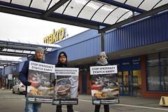 MAKRO Częstochowa1.d (Otwarte Klatki) Tags: aktywizm karpie streetwork