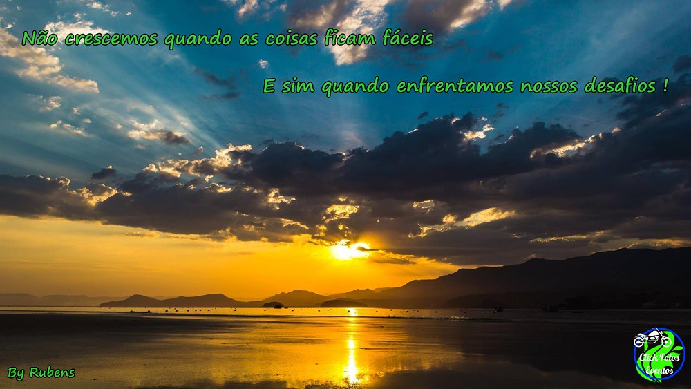 The Worlds Best Photos Of Frases And Natureza Flickr Hive