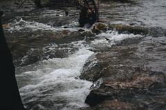 Full Force (de.pict) Tags: austin texas creek water river nature canon 6d 24105mm