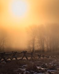Freezing Fog Sunrise (Ray Mines Photography) Tags: montana weather fog freezing cold winter morning sunrise outdoor mountains wildlife rugged