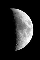 untitled (cottert) Tags: skywatcher200p moon