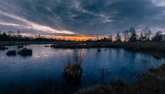 Hahnenmoor (andreasmally) Tags: hahnenmoor sunset sonnenuntergang moor wasser water germany deutschland bog himmel sky cloud