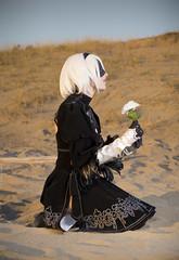 _MG_1507 (Mauro Petrolati) Tags: nierautomata nier automata 2b deserto desert set sara noxblade cosplay cosplayer fiore flower white bianco