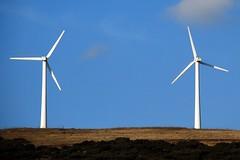 A la espera de viento (Navarra, España, 29-2-2008) (Juanje Orío) Tags: navarra 2008 provinciadenavarra españa espagne espanha espanya spain europa europe europeanunion unióneuropea energíarenovable energíalimpia aerogenerador