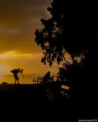 Golden hour of the photographer (zolaczakl) Tags: bristol goldenhour silhouette brandonhill 2019 uk england trees sunset bench photographybyjeremyfennell nikond800 nikonafsnikkor50mmf18glens jeremyfennellphotography