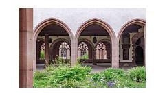 Die den Durchblick haben... (rafischatz... www.rafischatz-photography.de) Tags: muenster kreuzgang churchyard basel