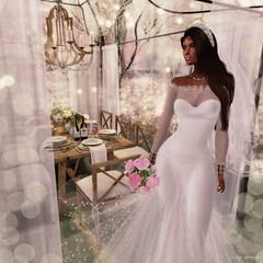 Reception (Indigo Avonside of My Sister's Closet) Tags: indigo lelutka maitreya revoul iconic tiffanydesigns gorgeousdolls
