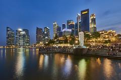 Singapore Skyline (Joao Eduardo Figueiredo) Tags: singapore skyline dusk asia nikon nikond800e joaofigueiredo joaoeduardofigueiredo merlion bluehour skyscrapers singapura neon lights water reflection