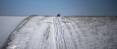 to sledge or to drive ... (Redheadwondering) Tags: sonyα7ii salisburyplain wiltshire winter snow landscape tracks byway minolta minolta100200mm fence fences fenceposts