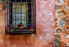Ventana Francesa (346/365) (Walimai.photo) Tags: ventana window textura texture planta plant wall pared nikon d7000 nikkor 35mm