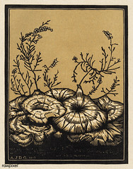 Blossoming plants (1917) by Julie de Graag (1877-1924). Original from The Rijksmuseum . Digitally enhanced by rawpixel. (Free Public Domain Illustrations by rawpixel) Tags: nam antique art artistic artwork illustration pdrijks publicdomain blossom rijksmuseum sketch cc0 vintage drawing woodcut handdrawn illustrated illustrator juliedegraag name old