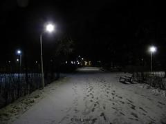 Snow in Bazilescu park, Bucharest - without flash (cod_gabriel) Tags: bazilescu winter iarna iarnă snow zapada zăpadă noapte night romania roumanie românia bucurești bucuresti bucharest bukarest boekarest bucarest bucareste