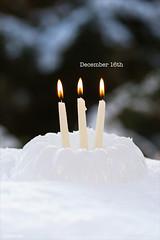 December 16th (sch.o.n) Tags:
