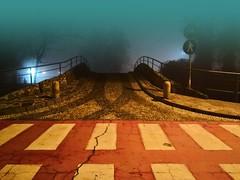 Cassano d'Adda (Milano) (pattyconsumilano) Tags: cassanodadda nebbia fog foggynight notturnoconnebbia