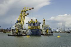 Port  de Rotterdam (musette thierry) Tags: rotterdam port grue musette thierry eau paysbas holande nikon d800 jaune