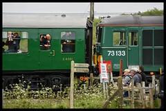 73133 (Lewis_Hurley) Tags: passengers coach mk1 photograhers people railway train diesel dieselgala swanagerailway dorset england uk swanage 73133 class73 73