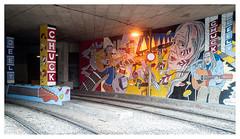 Tribute to Chuck (leo.roos) Tags: chuckdeely tramtunnel muurschildering mural muralism graffiti graphitti grafitti wallart streetart graphiti sophiadenbreems denhaag thehague a7s meyerorestegon2928 1968 m42 darosa leoroos haagseneilyoung streetperformer busker guitarist singer straatmuzikant