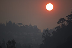 Camp Fire effect (verona39) Tags: camp fire effect oakland california sunrise smoke visibility poor air quality bad