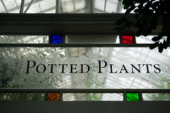 Just get potted (Dominic Sagar) Tags: amy arlen felsen friends glass sanfrancisco window pane plant california unitedstates us