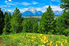 WY Grand Teton National Park (FAVAustinTX) Tags: wy wyoming grandtetonnationalpark jacksonhole