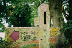 _1340480.jpg (Ricksters) Tags: hindhead england unitedkingdom gb
