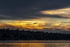 Coming Home (BobbyFerkovich) Tags: bristolsunsetrentonwashingtonlakewashington clouds water airplane landing southport golden hour dusk twilight renton municipal airport