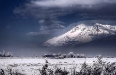 giganti sospesi (swaily ◘ Claudio Parente) Tags: abruzzo marsica fucino neve nebbia fog swaily claudioparente nikond500 nikon d500