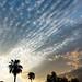 Altocumulus Arizona Sunset