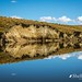 Lake Onslow, 'The Dismal Swamp', Central Otago