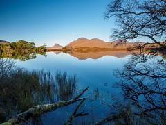 Loch Cùl Dromannan (Highlandscape) Tags: schottland iainmacdiarmid highlandscape drumnadrochit шотландия skottland inverpolly a835 stackpolly stacpollaidh scozia cùlbeag assynt escócia unitedkingdom highland skotsko scotland coigach yralban escocia lochcùldromannan lecosse škotska skotland highlandscapezenfoliocom szkocja uk scoţia