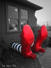 Ruby slippers (Dave Heaphy) Tags: