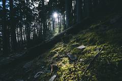 甘道夫│黑森林│Taiwan (Nick_Ning_Huang) Tags: 台灣 雪山 黑森林 圈谷 石 樹 山 天 天空 雲 taiwan syue black forest rock tree sky cloud light sunlight sony ilce7rm3 ilce 7rm3 a7r3 camera fe1635mmf4zaoss fe 1635 za