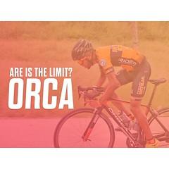 ¿LIMIT? No conocemos eso. Desde nuestra Primera Carrera juntos que, de hecho ganamos, Orca y yo seguimos juntos este 2019. ¡Hecha para ganar! 🏁 🏁 . . . . . . . #LaBicicleteriaDO #OrbeaRD #MyOrbea #OrbeaOrca #Love #Bicycle #Mo (STIoficial) Tags: stioficial instagram turismo republicadominicana dominicana tourism travel trip dominicanrep dominican andoenrd