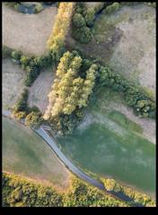 180919-0110-MAVICP-HDR.JPG (hopeless128) Tags: 2018 fields eurotrip road trees france nanteuilenvallée charente fr