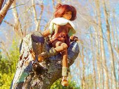 Perched (Forest_Daughter) Tags: atelier momoni ateliermomoni minireira bjd balljointed doll artistbjd artistdoll