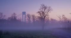 Fog Is An Illusion (chweepchan) Tags: fog tree bridge