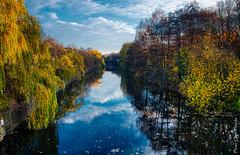Herbstlicher Kanal (floerioHH) Tags: 2018 autumn hamburg barmbeksüd city autumncolors xh1 fujixseries fujifilm herbst herbstfarben hdr