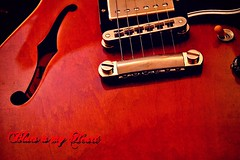 Blues is my Heart*Blues is my Soul (Bigeyes34) Tags: gibson menphis es335 blues rock red jazz humbucker te tennessee 154