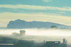 Automne à Esmonts (Meinrad Périsset) Tags: automne autumn esmonts paysage landscape fog brouillard switzerland suisse swizzera schweiz nikon nikond800 d800 captureonepro