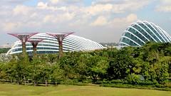 IMG_2534 (Pataclic) Tags: arbre cloudforest flowerdome garden gardenbythebay jardin singapour