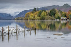 Changing Colour (Andy Bracey -) Tags: bracey andybracey autumn island hills mountains reflection reflected lakedistrict cumbria shore lakeshore fence fenceline weed holidays changingcolours fall trees wood boatjetty jetty peaks house keswick snow frost cold morning keswickboatlandings fells