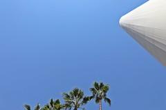 Sevilla Expo '92 (just.Luc) Tags: trees bomen arbres bäume palmbomen palmiers palmbäume palmtrees spain spanje espagne españa spanien andalusië andalucía andalusien andalousie andalusia sevilla seville séville siviglia europa europe blue bleu blauw azul blau white wit blanc weiss