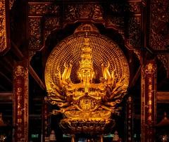 Buddhist Temple (Rod Waddington) Tags: vietnam vietnamese buddhism indoor gold temple religion asia