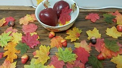 059 (Rennae_lc) Tags: autumn leaves decorations display apples