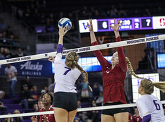 Stanford Washington-FT4I7202 (Pacific Northwest Volleyball Photography) Tags: volleyball ncaa stanford washington uwhuskies pac12 pac12vb