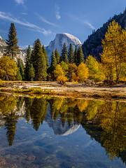 Half Dome Fall Reflection (Jeff Sullivan (www.JeffSullivanPhotography.com)) Tags: national park fall colors photography workshop yosemitenationalpark yosemitevalley yosemitevillage mariposacounty california usa nature landscape travel night photographer canon eos 5d mark iv photo copyright 2018 jeff sullivan october yosemite reflection halfdome